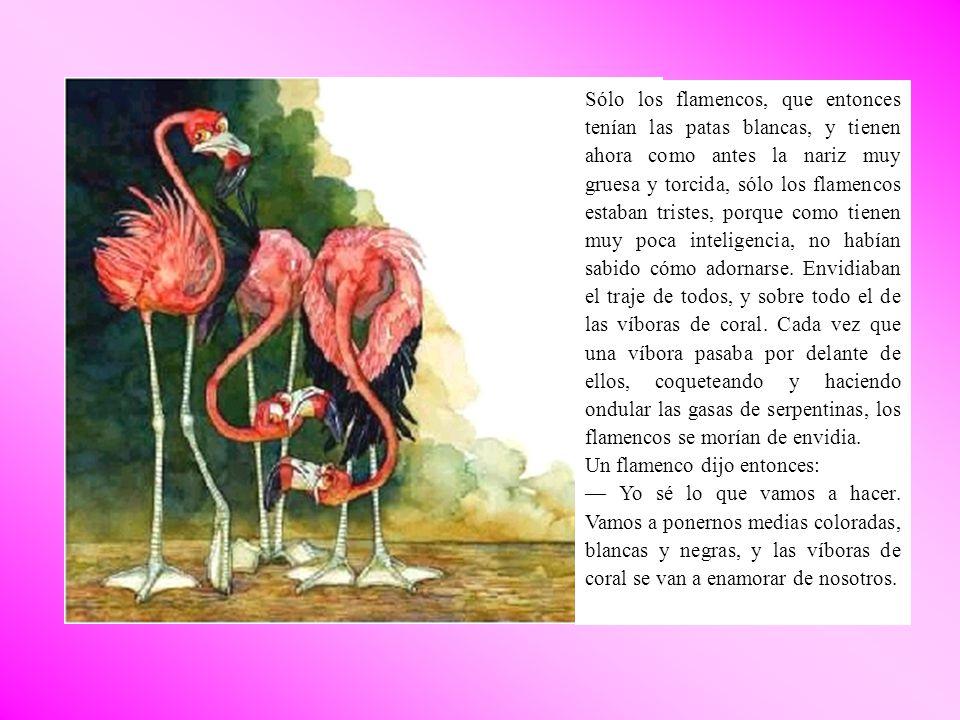Sólo los flamencos, que entonces tenían las patas blancas, y tienen ahora como antes la nariz muy gruesa y torcida, sólo los flamencos estaban tristes