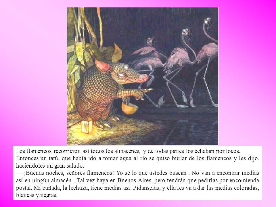 Los flamencos le dieron las gracias, y se fueron volando a la cueva de la lechuza.