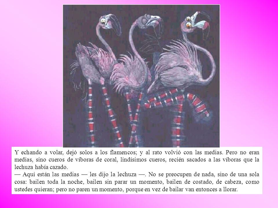 Y echando a volar, dejó solos a los flamencos; y al rato volvió con las medias. Pero no eran medias, sino cueros de víboras de coral, lindísimos cuero