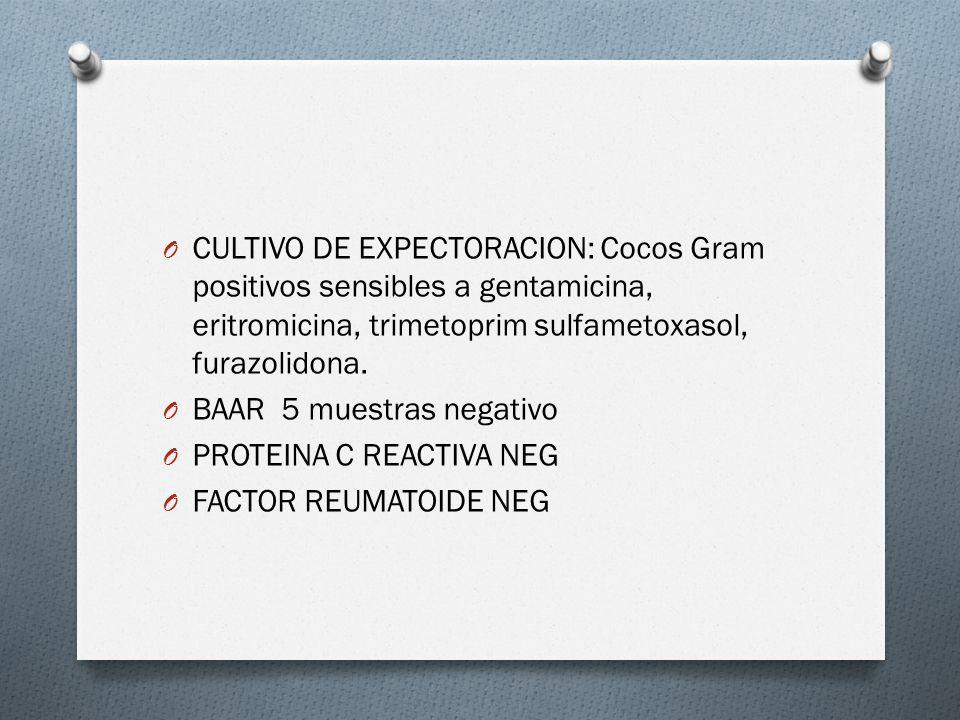 O CULTIVO DE EXPECTORACION: Cocos Gram positivos sensibles a gentamicina, eritromicina, trimetoprim sulfametoxasol, furazolidona. O BAAR 5 muestras ne