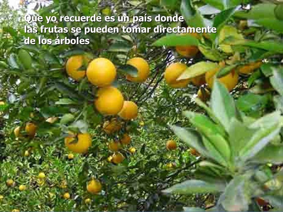 Que yo recuerde es un país donde las frutas se pueden tomar directamente de los árboles