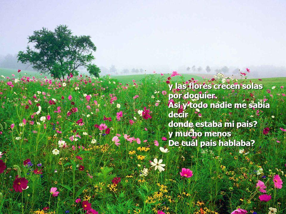 y las flores crecen solas por doquier.Asi y todo nadie me sabía decir donde estaba mi pais.