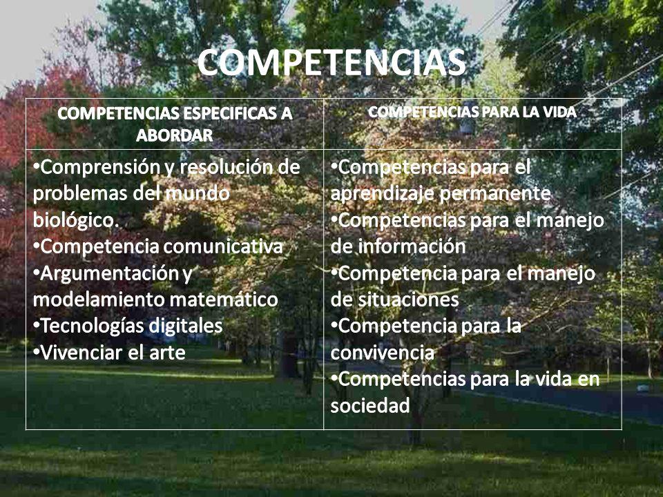 TRANSVERSALIDAD Español Tecnología Matemáticas Artes