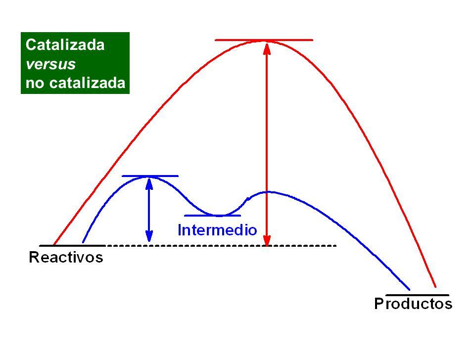 Catalizada versus no catalizada