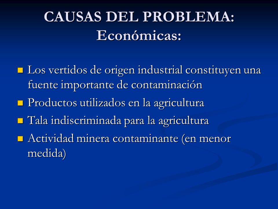 CAUSAS DEL PROBLEMA: Económicas: Los vertidos de origen industrial constituyen una fuente importante de contaminación Los vertidos de origen industria