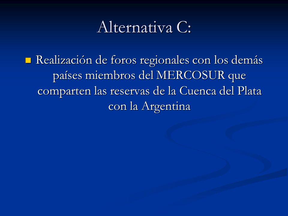 Alternativa C: Realización de foros regionales con los demás países miembros del MERCOSUR que comparten las reservas de la Cuenca del Plata con la Arg