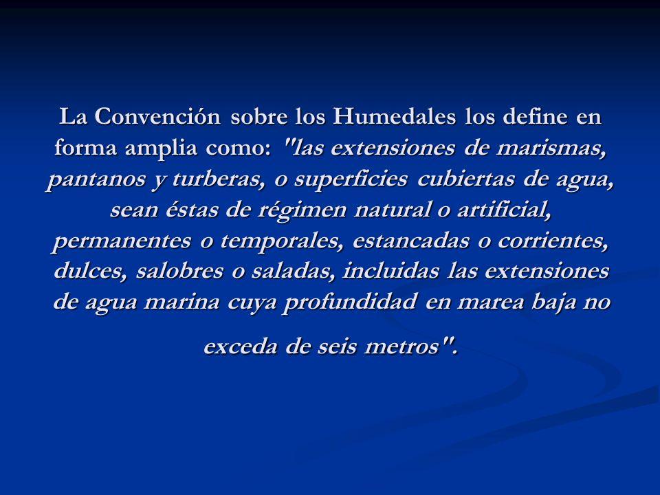 La Convención sobre los Humedales los define en forma amplia como:
