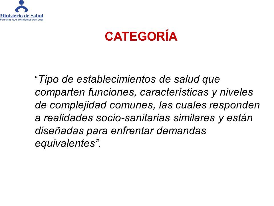 TAMAÑO NIVEL TECNOLOGICO CAPACIDAD RESOLUTIVA CUANTITATIVA CAPACIDAD RESOLUTIVA CUALITATIVA Elementos Constitutivos