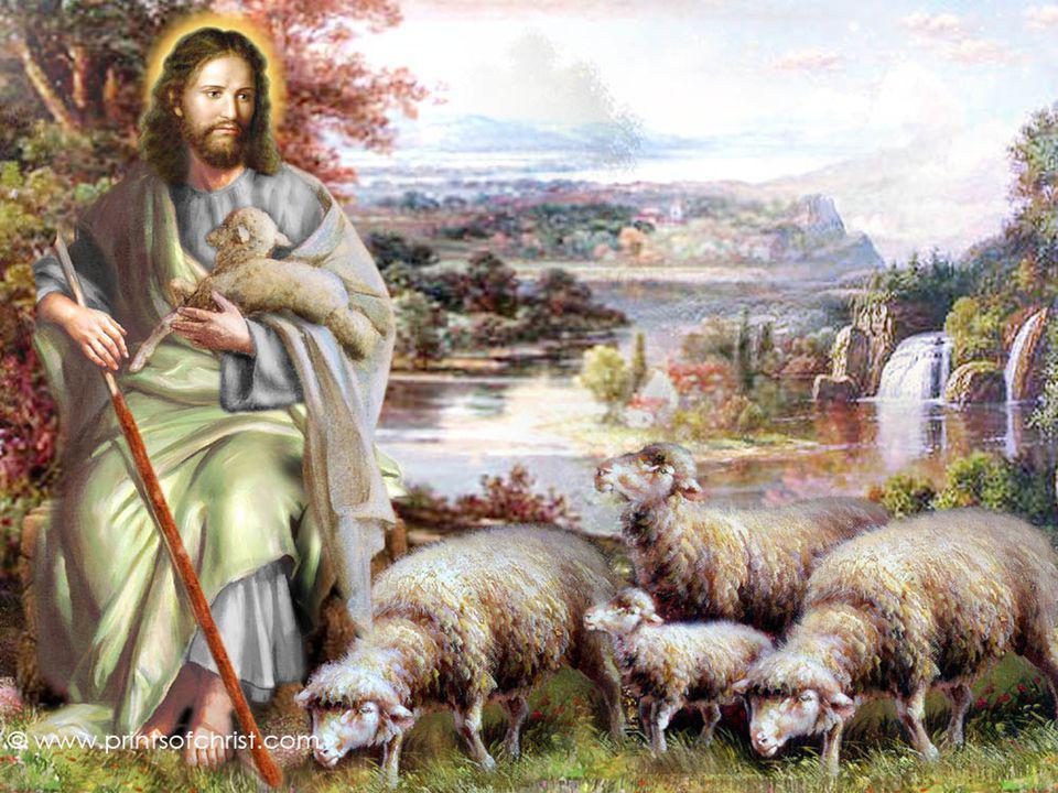 ¿Cómo desempeña Cristo su misión de Pastor? Él conoce las