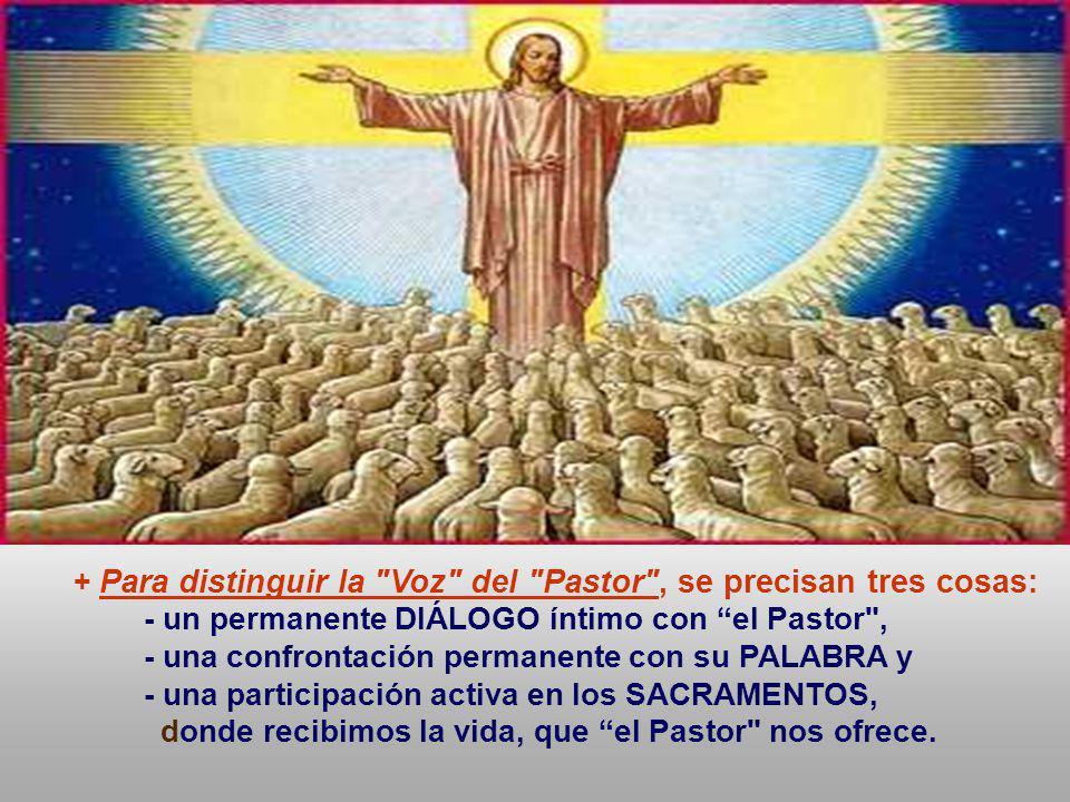 En las comunidades cristianas, tenemos personas que presiden y animan. - ¿Aceptamos a las personas que han recibido esa misión de Cristo y de la Igles