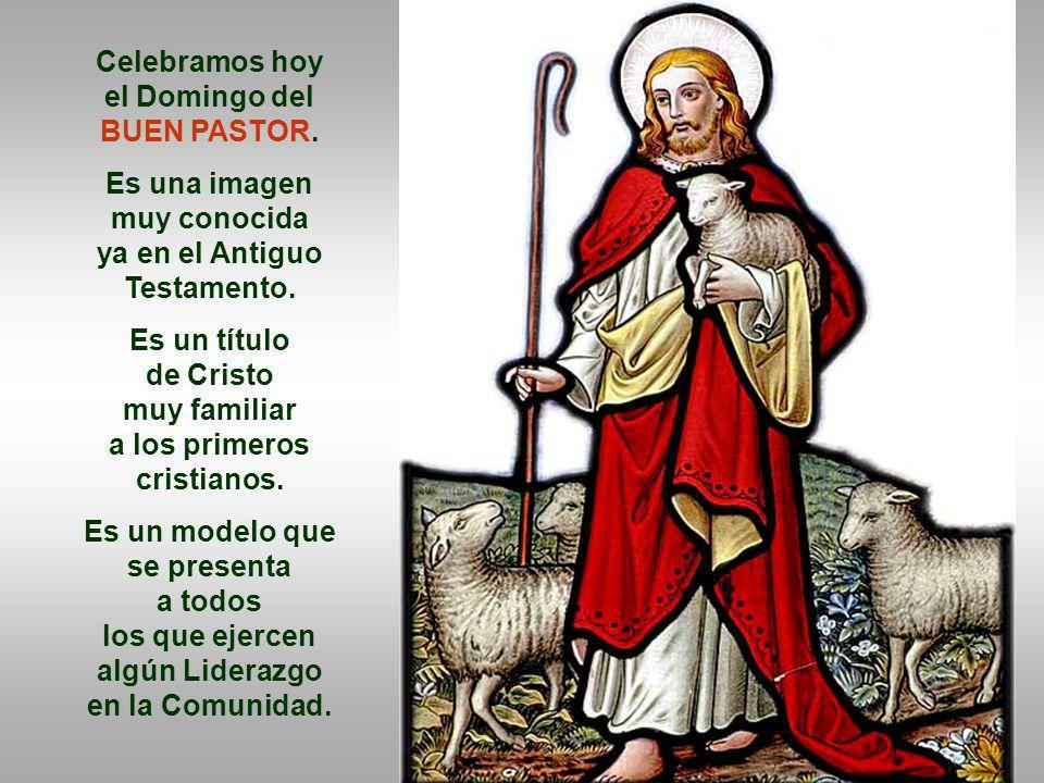En las comunidades cristianas, tenemos personas que presiden y animan.
