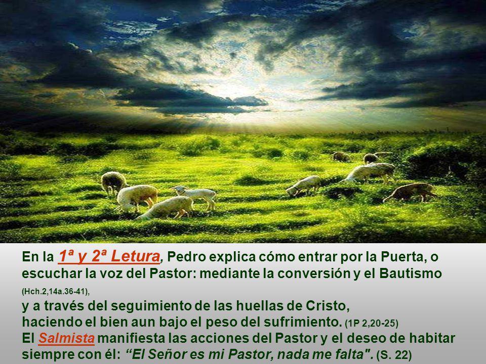 En la 1ª y 2ª Letura, Pedro explica cómo entrar por la Puerta, o escuchar la voz del Pastor: mediante la conversión y el Bautismo (Hch.2,14a.36-41), y a través del seguimiento de las huellas de Cristo, haciendo el bien aun bajo el peso del sufrimiento.