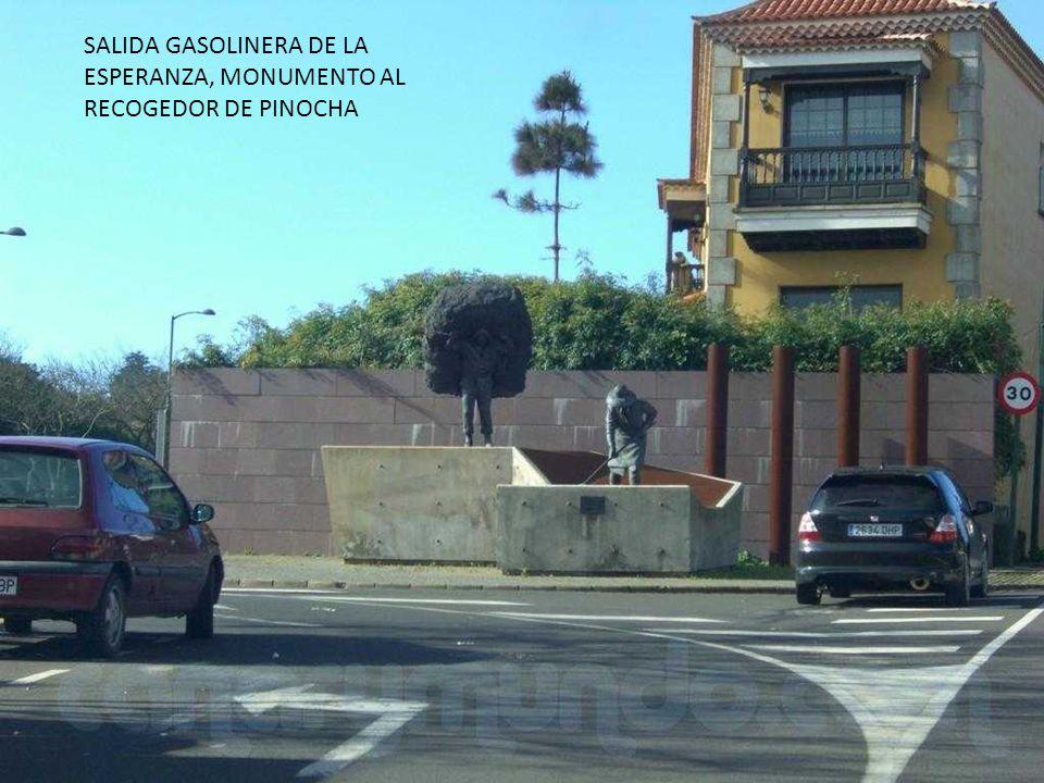 SALIDA GASOLINERA DE LA ESPERANZA, MONUMENTO AL RECOGEDOR DE PINOCHA