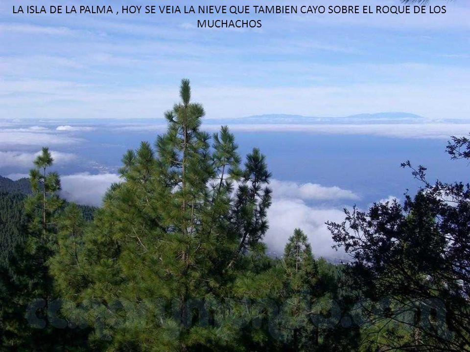 LA ISLA DE LA PALMA, HOY SE VEIA LA NIEVE QUE TAMBIEN CAYO SOBRE EL ROQUE DE LOS MUCHACHOS