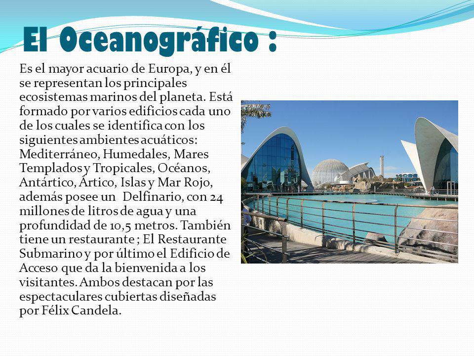 El Oceanográfico : Es el mayor acuario de Europa, y en él se representan los principales ecosistemas marinos del planeta.