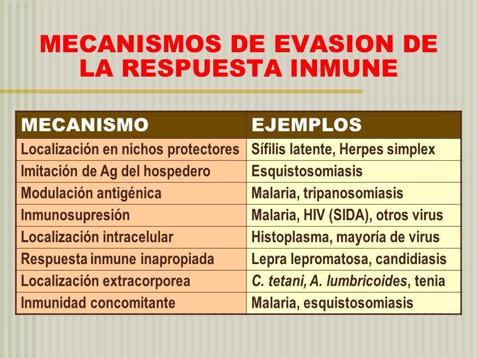 MECANISMOS DE EVASION DE LA RESPUESTA INMUNE MECANISMOEJEMPLOS Localización en nichos protectoresSífilis latente, Herpes simplex Imitación de Ag del h