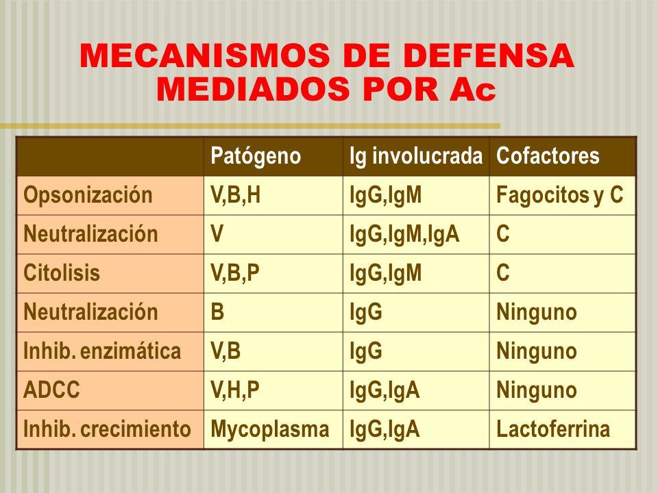MECANISMOS DE DEFENSA MEDIADOS POR Ac PatógenoIg involucradaCofactores OpsonizaciónV,B,HIgG,IgMFagocitos y C NeutralizaciónVIgG,IgM,IgAC CitolisisV,B,