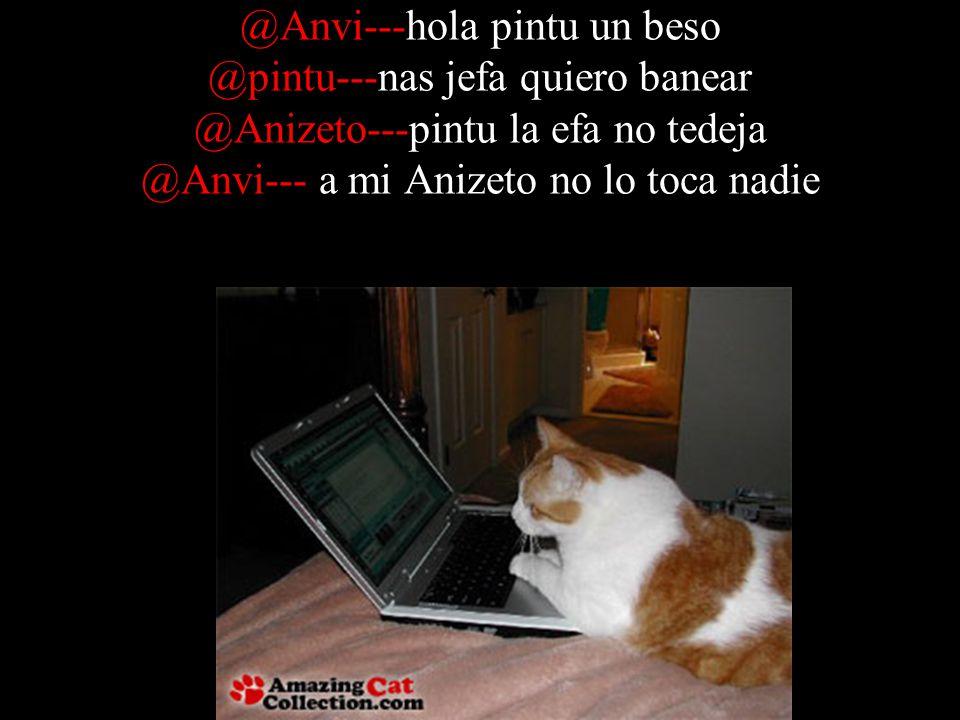 @Anvi---hola pintu un beso @pintu---nas jefa quiero banear @Anizeto---pintu la efa no tedeja @Anvi--- a mi Anizeto no lo toca nadie