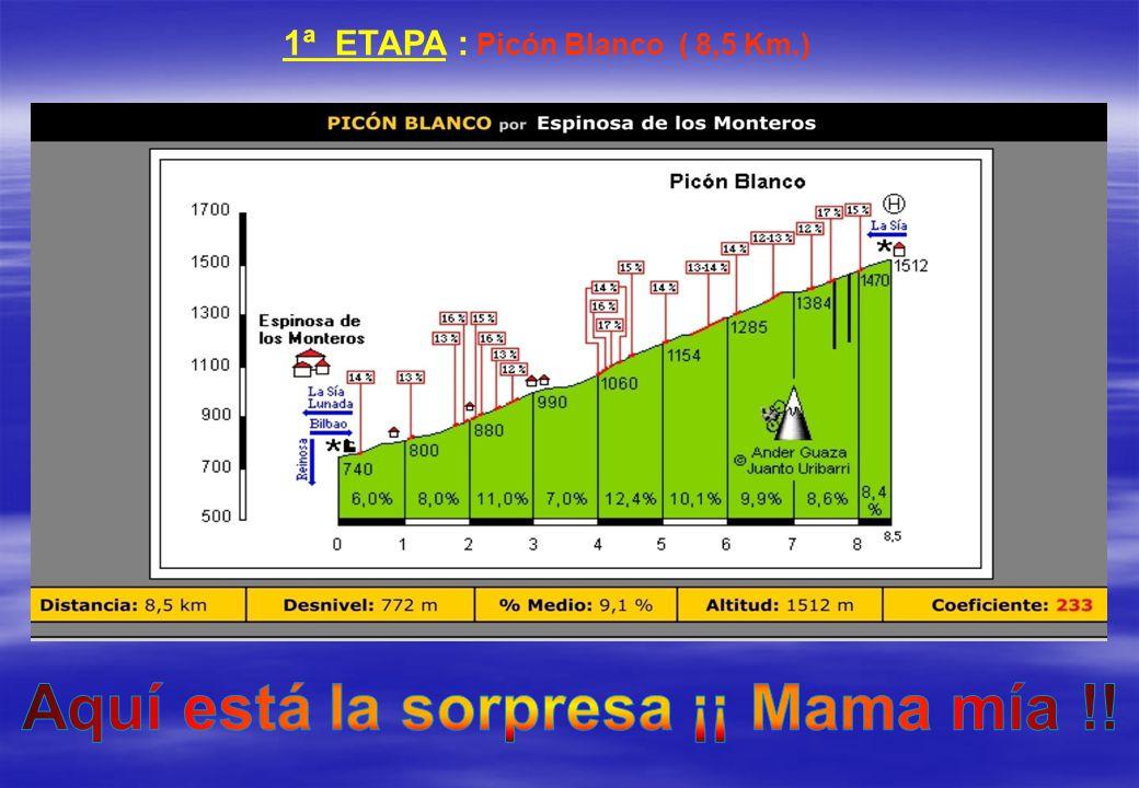 1ª ETAPA : Picón Blanco ( 8,5 Km.)