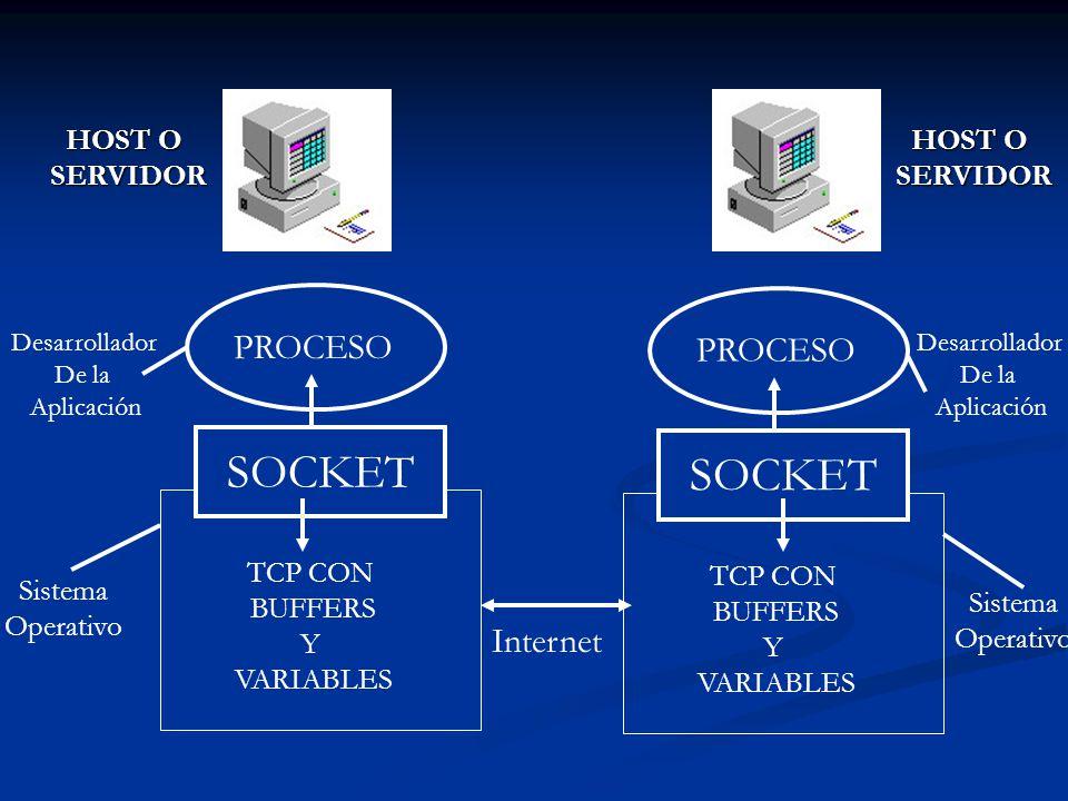 PROCESO SOCKET TCP CON BUFFERS Y VARIABLES PROCESO SOCKET TCP CON BUFFERS Y VARIABLES Internet Desarrollador De la Aplicación Desarrollador De la Apli