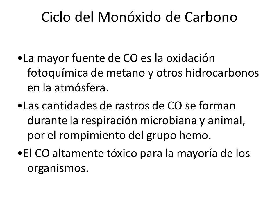 Ciclo del Monóxido de Carbono La mayor fuente de CO es la oxidación fotoquímica de metano y otros hidrocarbonos en la atmósfera. Las cantidades de ras