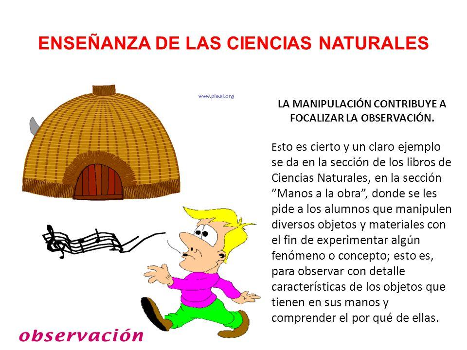 ENSEÑANZA DE LAS CIENCIAS NATURALES LA MANIPULACIÓN CONTRIBUYE A FOCALIZAR LA OBSERVACIÓN.
