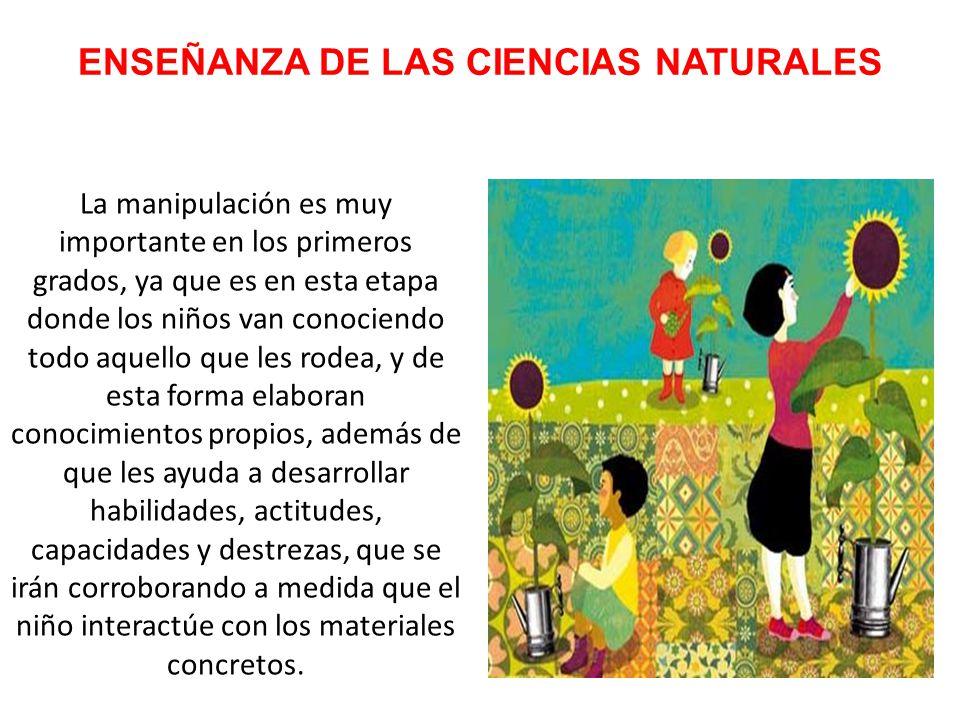 ENSEÑANZA DE LAS CIENCIAS NATURALES En relación con el entorno natural van formando su propia representación del mundo físico y elaborando hipótesis y teorías sobre los fenómenos que observan.