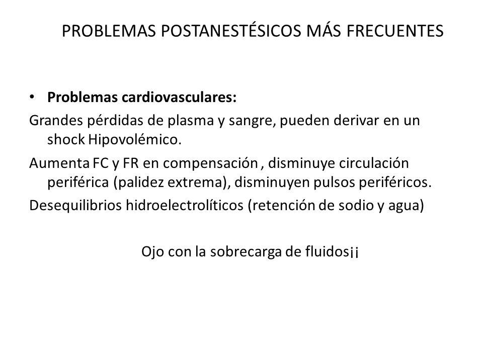 PROBLEMAS POSTANESTÉSICOS MÁS FRECUENTES Problemas cardiovasculares: Grandes pérdidas de plasma y sangre, pueden derivar en un shock Hipovolémico.
