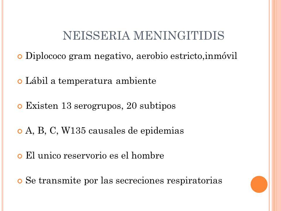 NEISSERIA MENINGITIDIS Diplococo gram negativo, aerobio estricto,inmóvil Lábil a temperatura ambiente Existen 13 serogrupos, 20 subtipos A, B, C, W135 causales de epidemias El unico reservorio es el hombre Se transmite por las secreciones respiratorias