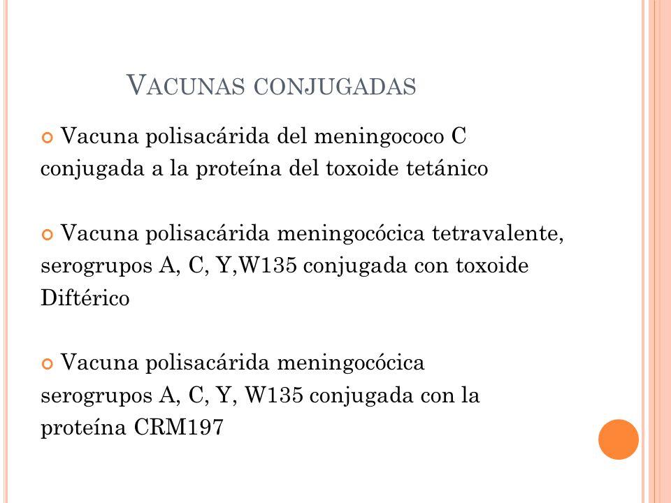 V ACUNAS CONJUGADAS Vacuna polisacárida del meningococo C conjugada a la proteína del toxoide tetánico Vacuna polisacárida meningocócica tetravalente, serogrupos A, C, Y,W135 conjugada con toxoide Diftérico Vacuna polisacárida meningocócica serogrupos A, C, Y, W135 conjugada con la proteína CRM197