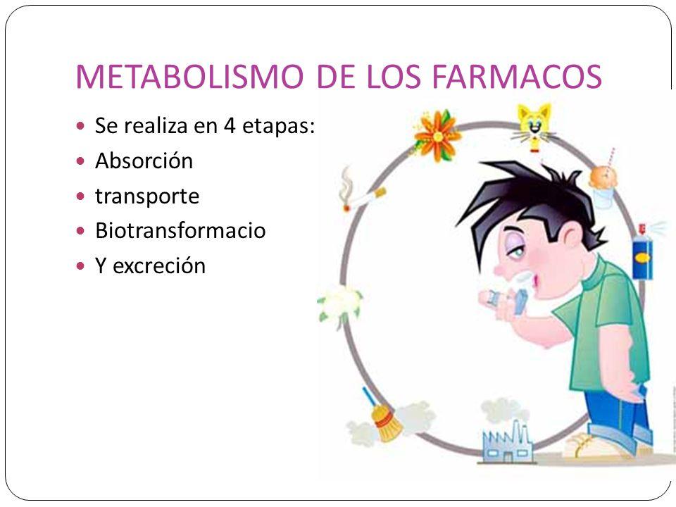METABOLISMO DE LOS FARMACOS Se realiza en 4 etapas: Absorción transporte Biotransformacio Y excreción