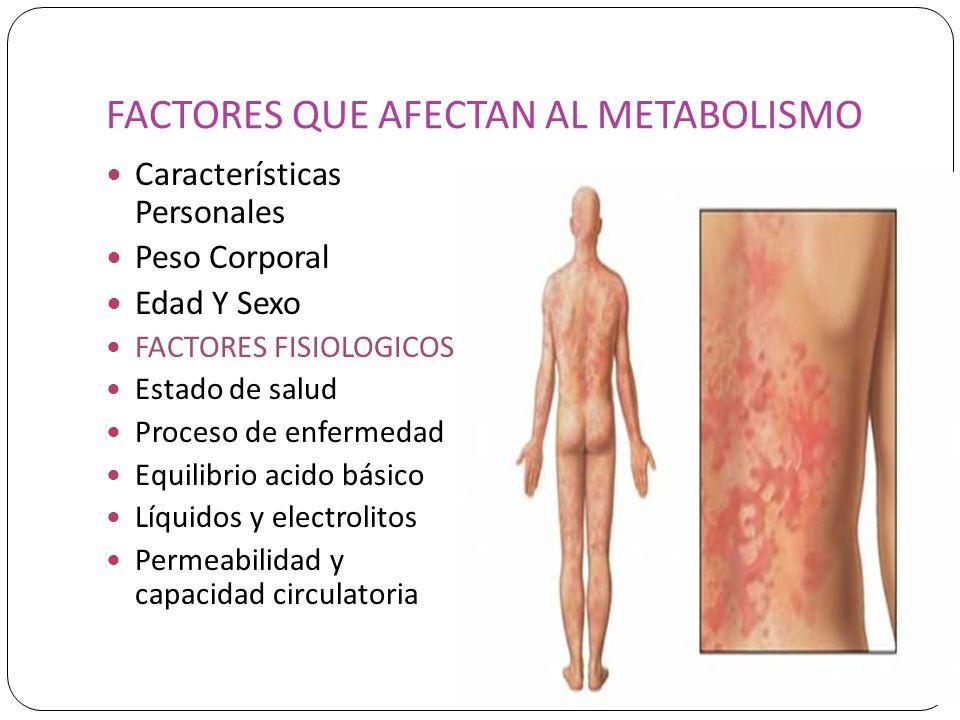 FACTORES QUE AFECTAN AL METABOLISMO Características Personales Peso Corporal Edad Y Sexo FACTORES FISIOLOGICOS Estado de salud Proceso de enfermedad E
