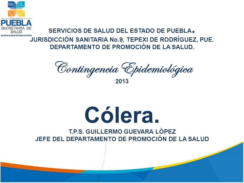 SERVICIOS DE SALUD DEL ESTADO DE PUEBLA.JURISDICCIÓN SANITARIA No.9, TEPEXI DE RODRÍGUEZ, PUE.