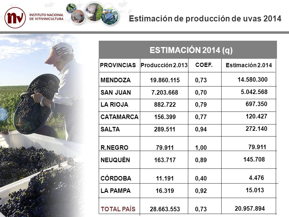 Estimación de producción de uvas 2014 Mill qq SERIE HISTÓRICA DE PRODUCCIÓN Media 25,6