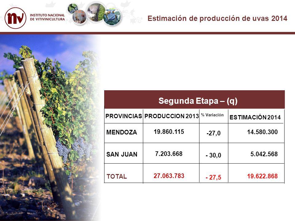 Estimación de producción de uvas 2014 Segunda Etapa – (q) PROVINCIASPRODUCCION 2013 % Variación MENDOZA SAN JUAN TOTAL 19.860.115 7.203.668 27.063.783