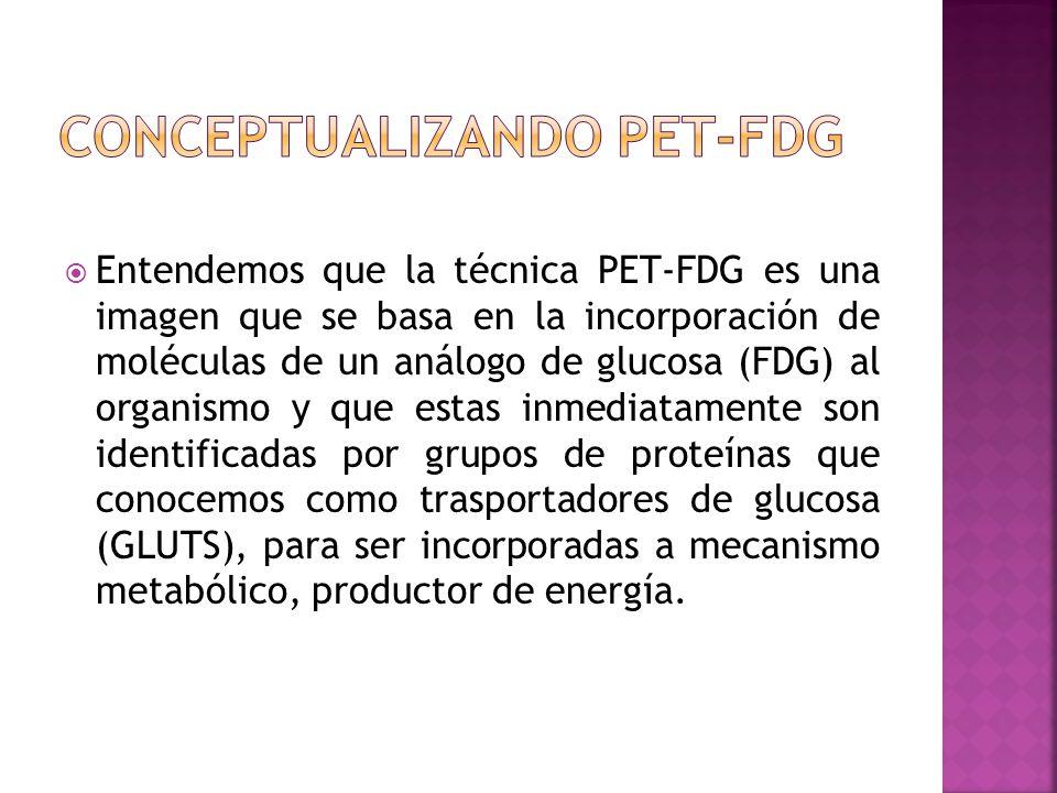 Entendemos que la técnica PET-FDG es una imagen que se basa en la incorporación de moléculas de un análogo de glucosa (FDG) al organismo y que estas i