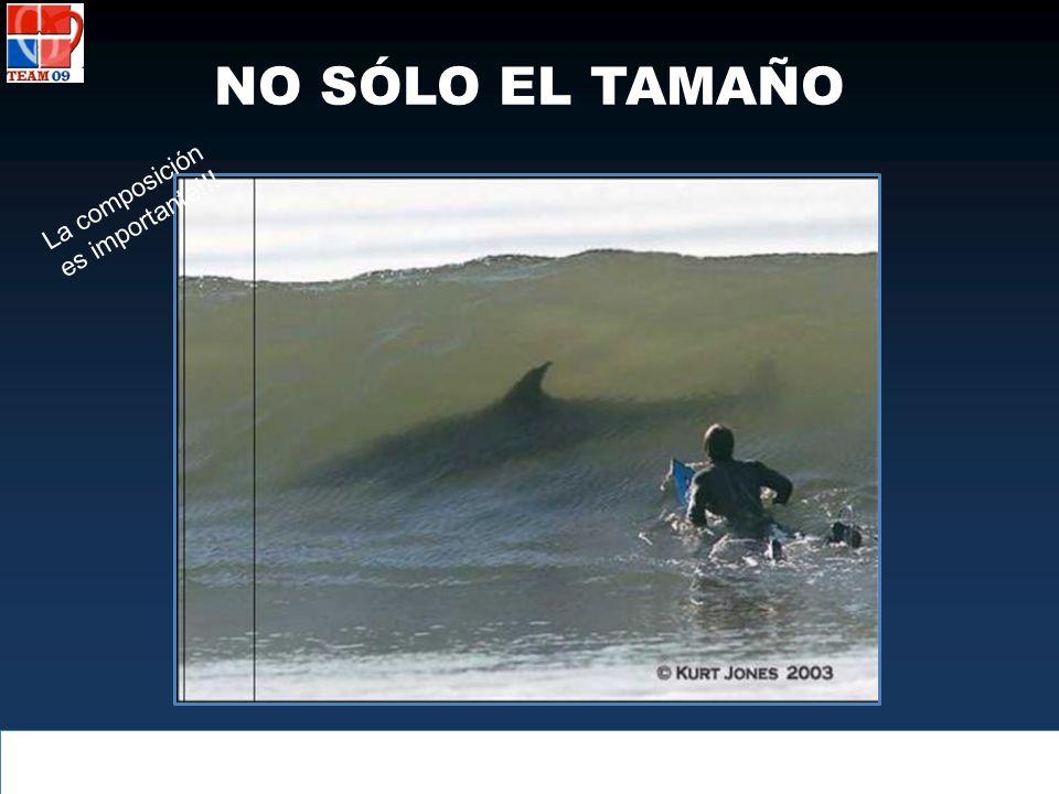 NO SÓLO EL TAMAÑO La composición es importante!!!