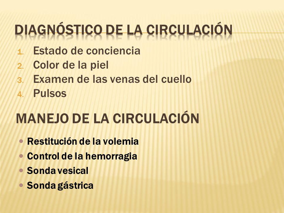 1. Estado de conciencia 2. Color de la piel 3. Examen de las venas del cuello 4. Pulsos MANEJO DE LA CIRCULACIÓN Restitución de la volemia Control de