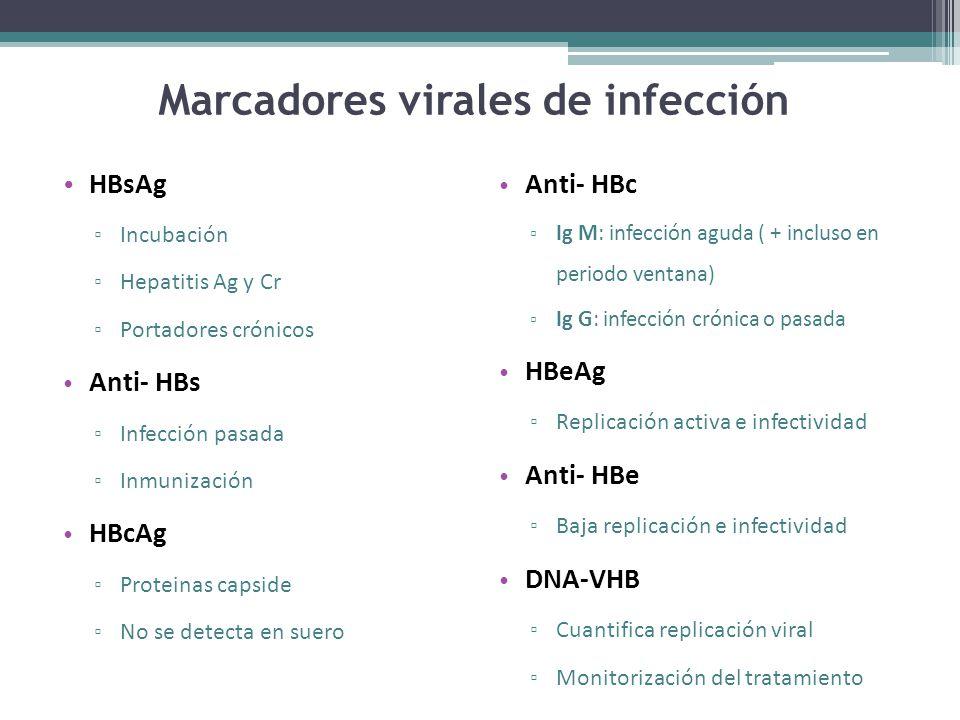 Marcadores virales de infección HBsAg Incubación Hepatitis Ag y Cr Portadores crónicos Anti- HBs Infección pasada Inmunización HBcAg Proteinas capside