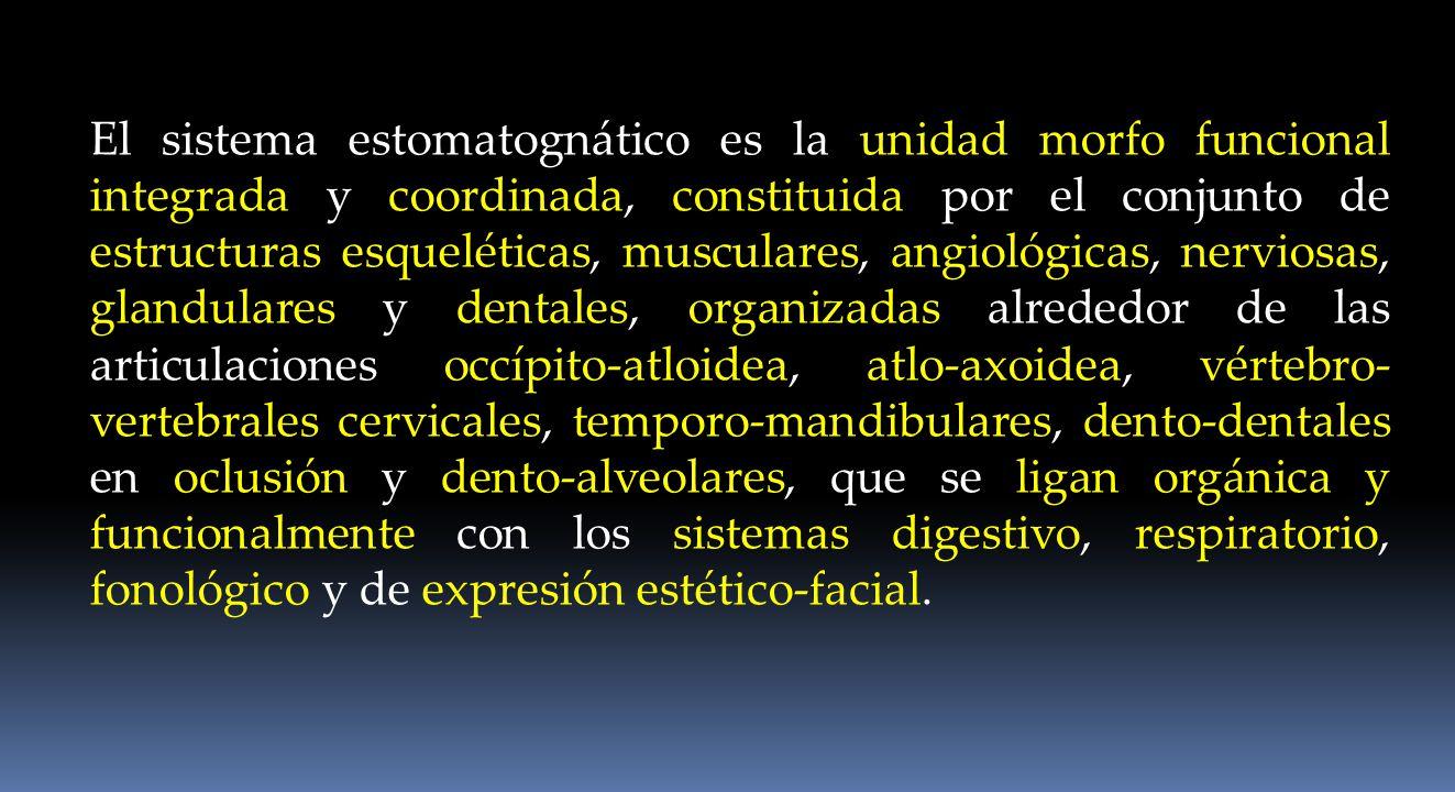 El sistema estomatognático forma parte de la UCCM Fisiología del sistema masticatorio