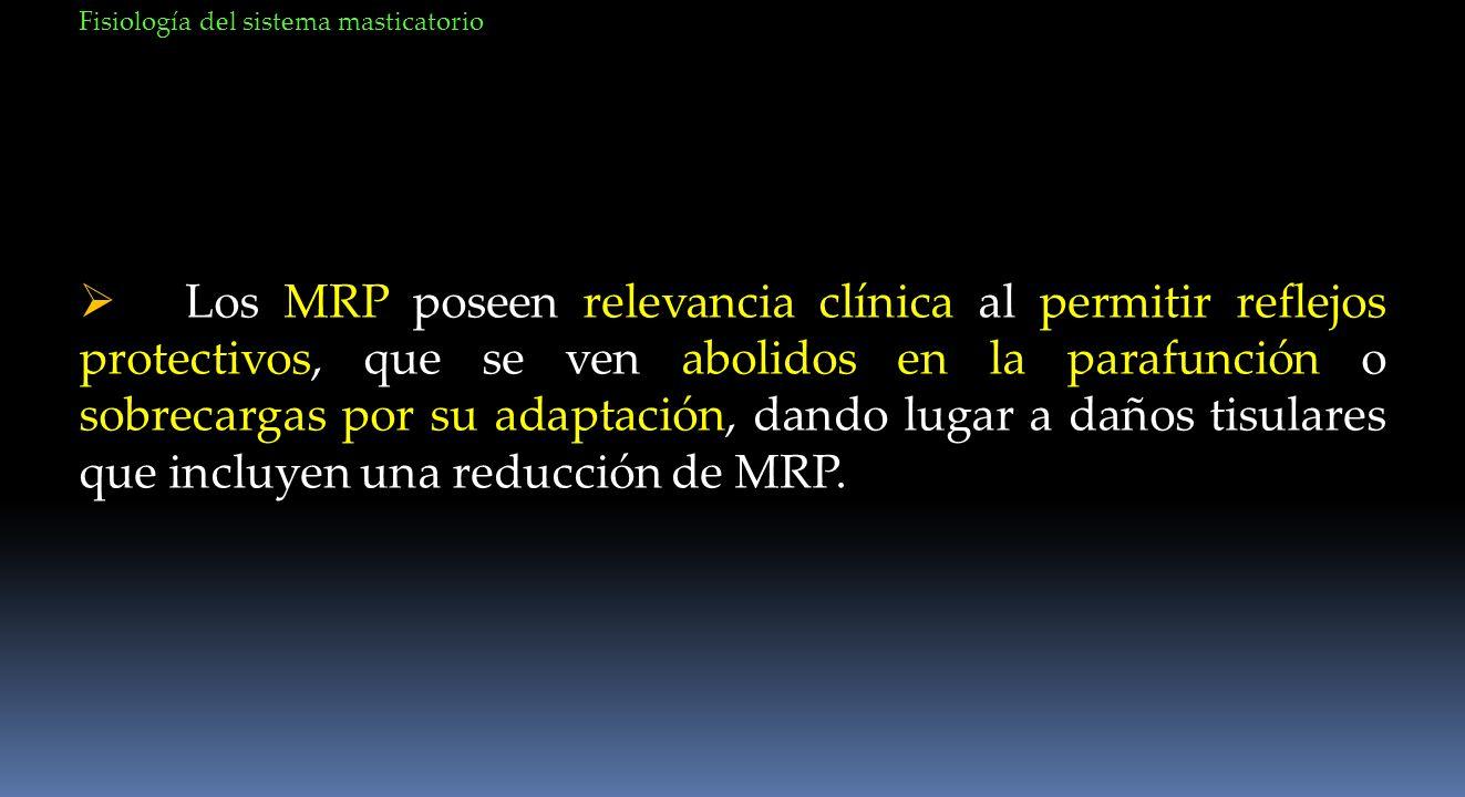 Los MRP poseen relevancia clínica al permitir reflejos protectivos, que se ven abolidos en la parafunción o sobrecargas por su adaptación, dando lugar