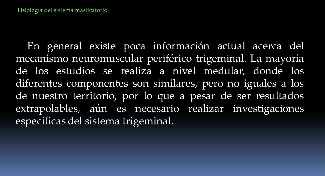 En general existe poca información actual acerca del mecanismo neuromuscular periférico trigeminal. La mayoría de los estudios se realiza a nivel medu