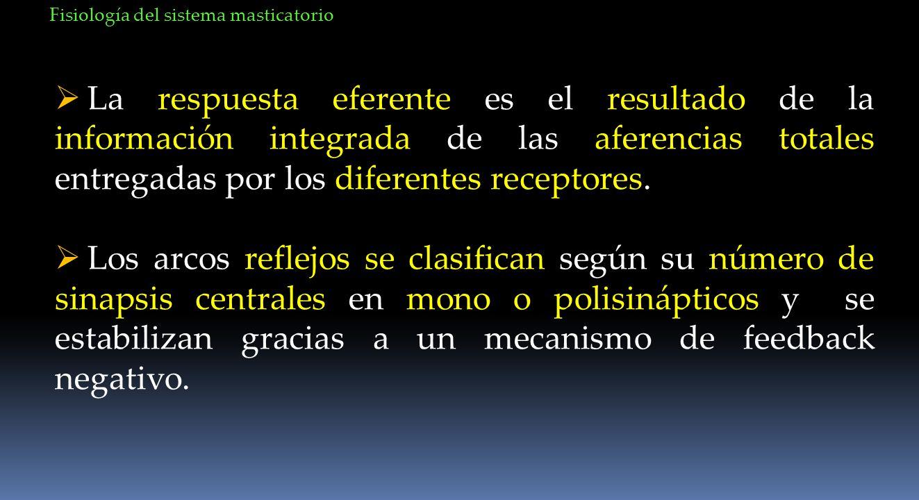 La respuesta eferente es el resultado de la información integrada de las aferencias totales entregadas por los diferentes receptores. Los arcos reflej