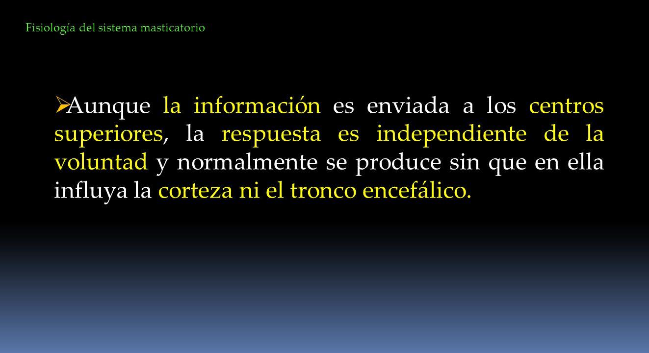 Aunque la información es enviada a los centros superiores, la respuesta es independiente de la voluntad y normalmente se produce sin que en ella influ