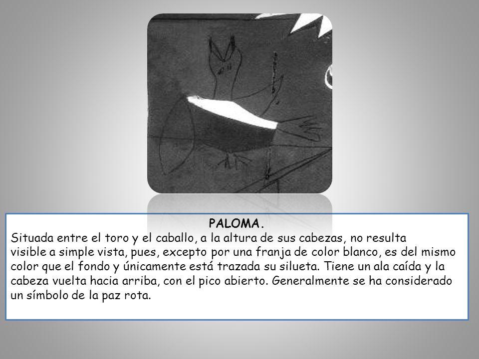 PALOMA. Situada entre el toro y el caballo, a la altura de sus cabezas, no resulta visible a simple vista, pues, excepto por una franja de color blanc