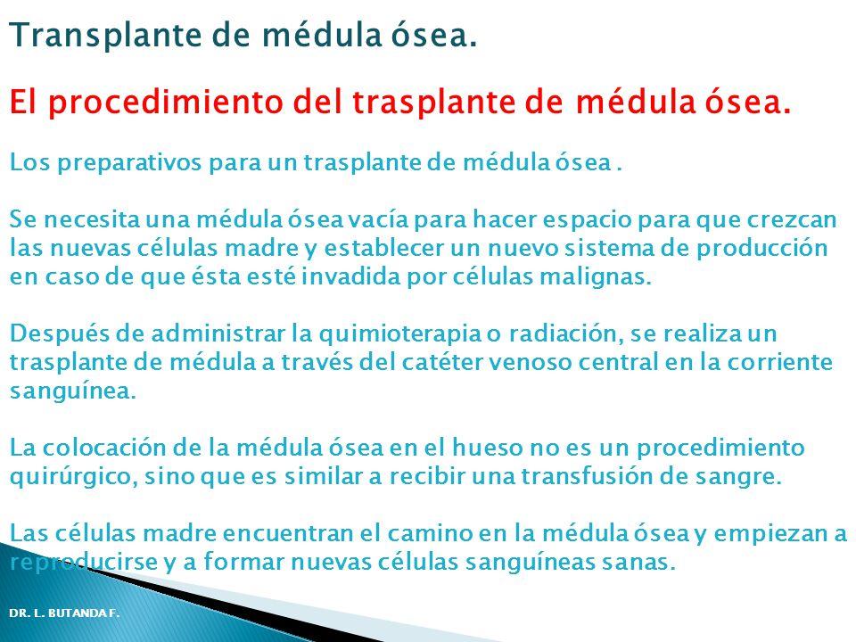 El procedimiento del trasplante de médula ósea. Los preparativos para un trasplante de médula ósea. Se necesita una médula ósea vacía para hacer espac