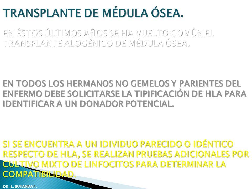TRANSPLANTE DE MÉDULA ÓSEA. EN ÉSTOS ÚLTIMOS AÑOS SE HA VUELTO COMÚN EL TRANSPLANTE ALOGÉNICO DE MÉDULA ÓSEA. EN TODOS LOS HERMANOS NO GEMELOS Y PARIE