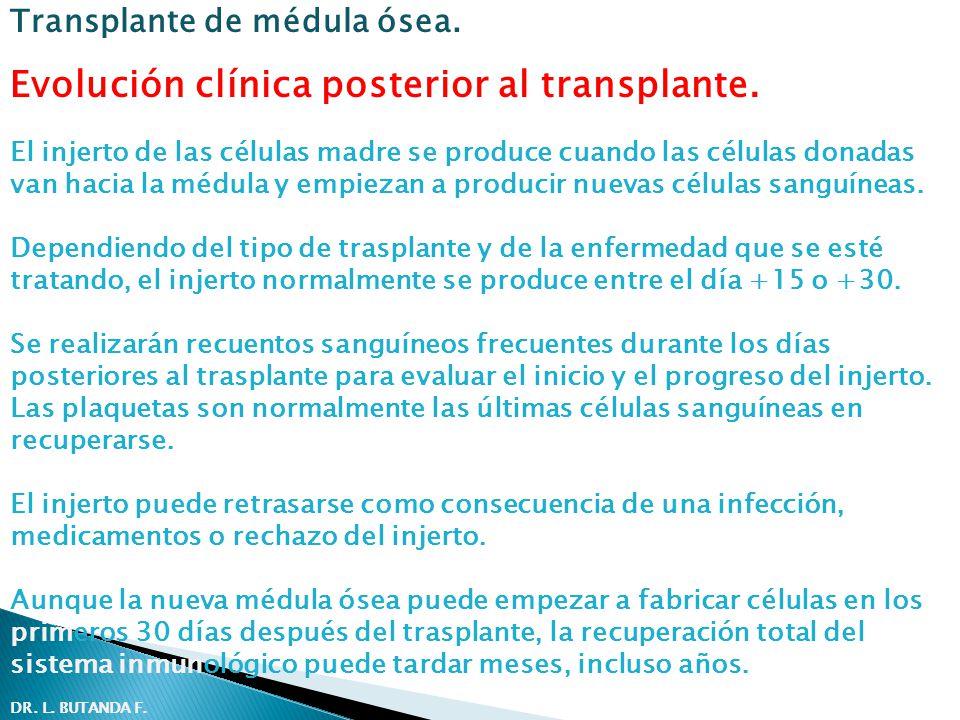 Evolución clínica posterior al transplante. El injerto de las células madre se produce cuando las células donadas van hacia la médula y empiezan a pro