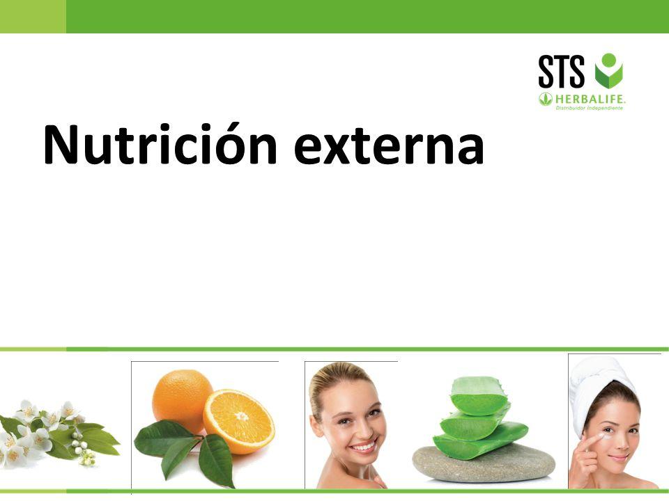 23 Nutrición externa