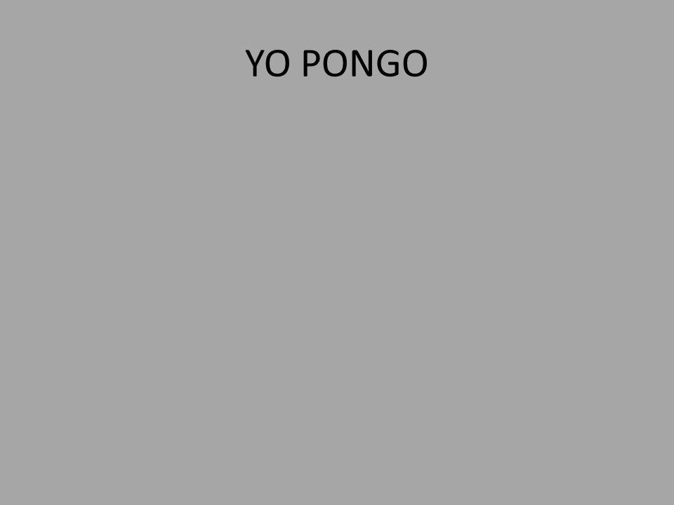 YO PONGO